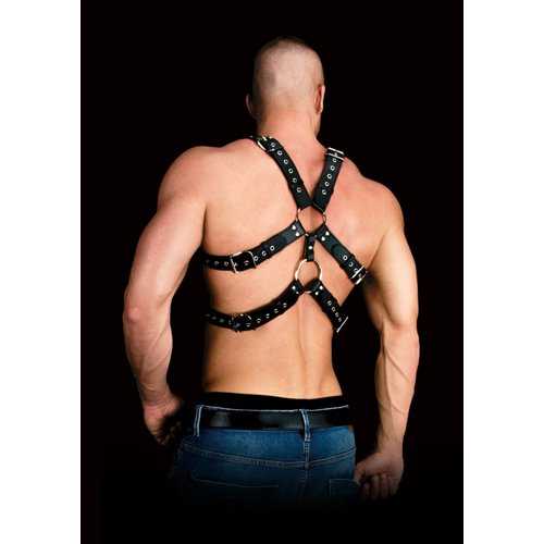 Harness Andres